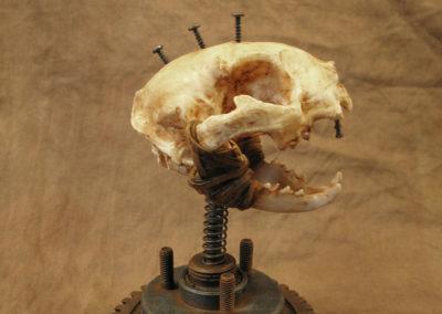 Crâne chat en résine post-apocalyptique